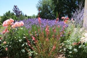 jardin-couleurs