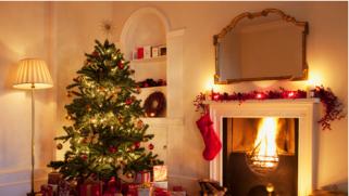 Choisir son sapin de Noël : conseils pour les retardataires