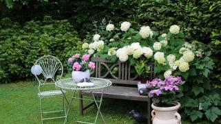 Créer chez soi un jardin romantique