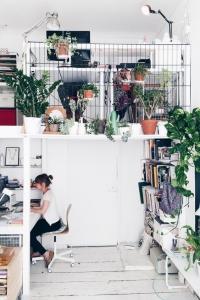 mezzanine isolée et décorée avec des plantes