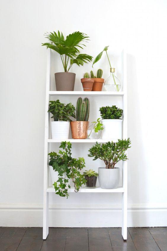 Les plantes sont l'incontournable 2018 de la déco d'intérieur