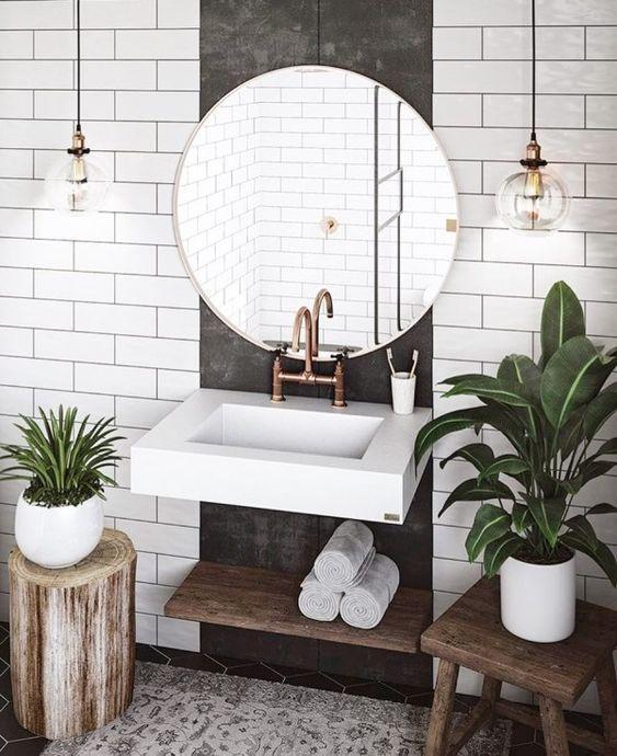 plantes dans la salle de bains