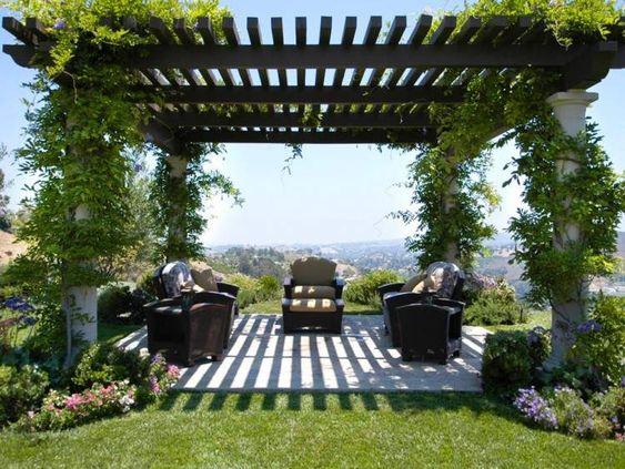 Terrasse ombragée par une pergola design recouverte de plantes grimpantes