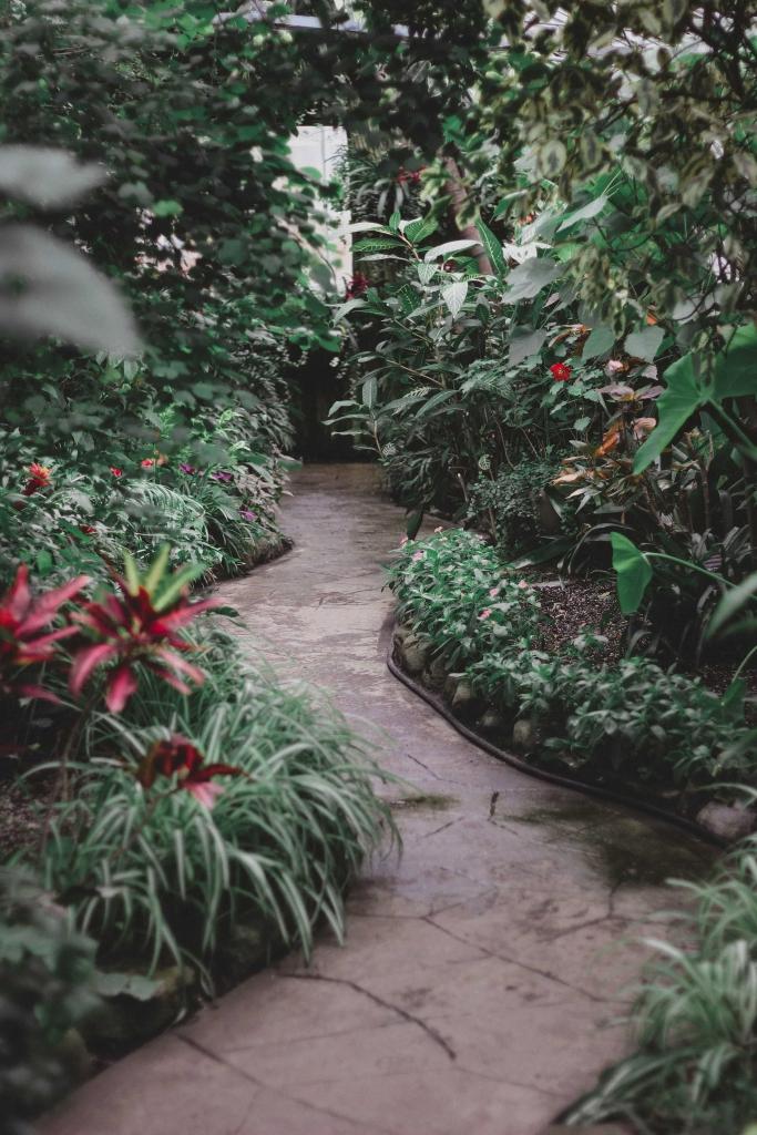 Une allée en pierre dans un jardin