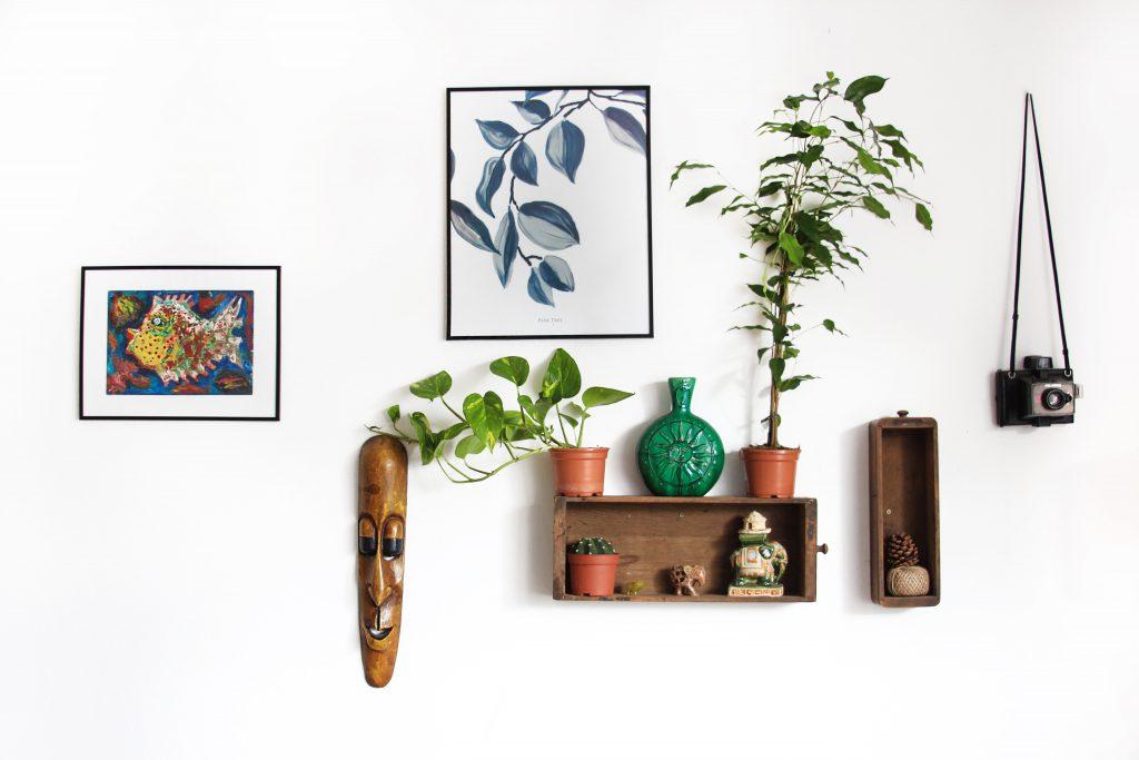 cadres, plantes et étagères sur un mur blanc