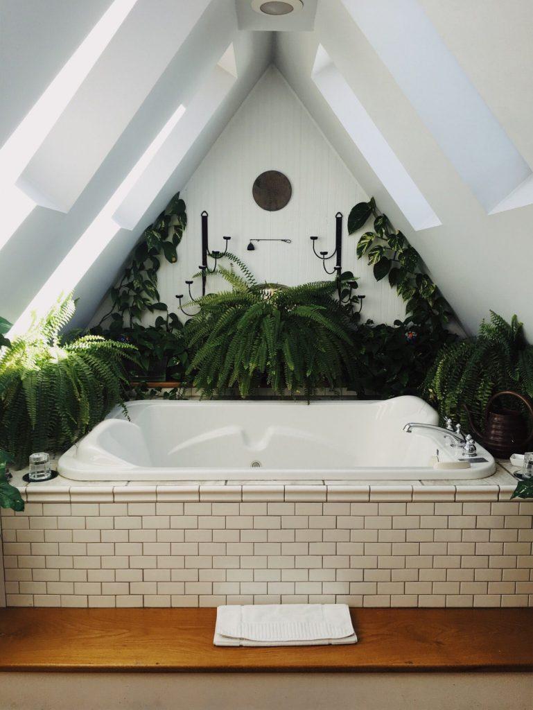 plantes vertes autour d'une baignoire de salle de bain